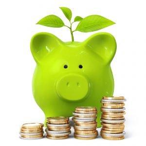 Vendor Finance - pig